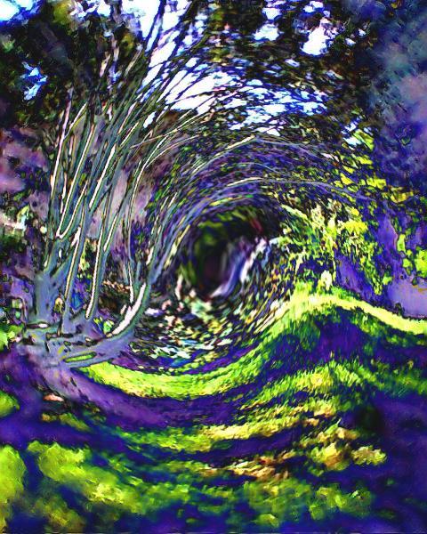 trees swirl