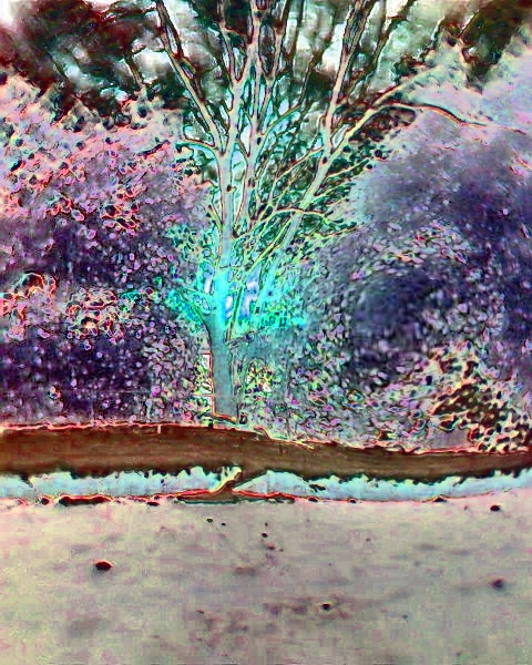 Photo0920  frozen 1