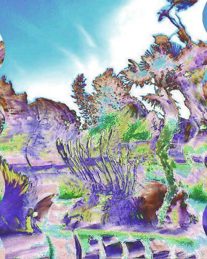 lily pond  2