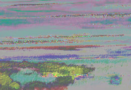 4662161_f260 3