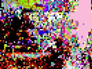 7321081_ddc4f0581d_m-300x225