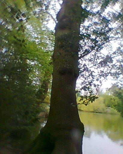 photo0227