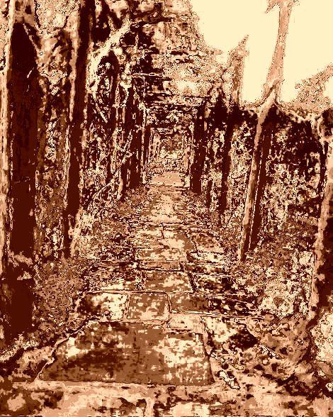 path-n2