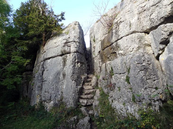 Limestone_Link_2643