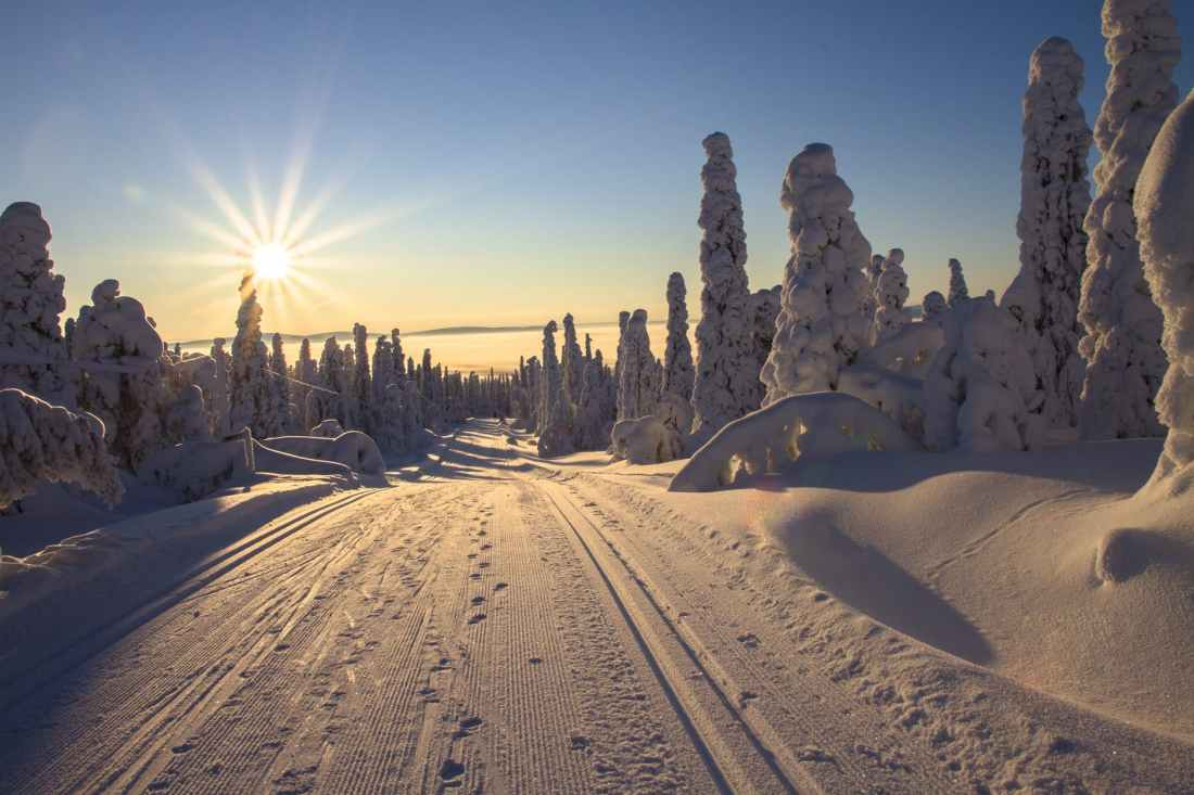 adventure cold cross country skiing dawn