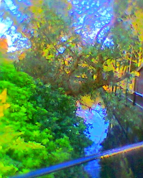 the river in colour.jpg