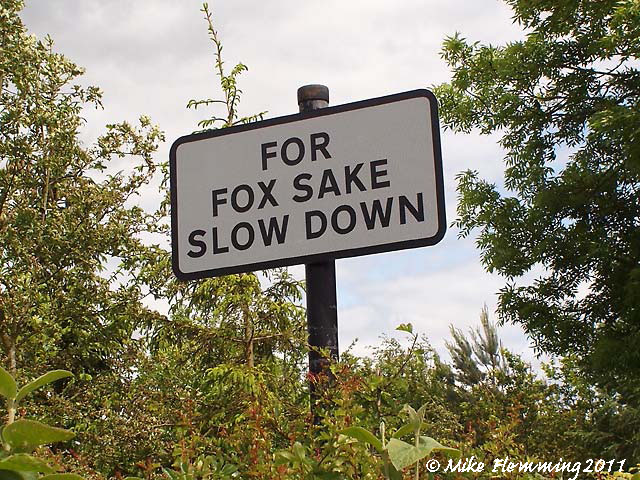 FoxSake